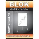 Blok FIPCHART 20kartek gładki